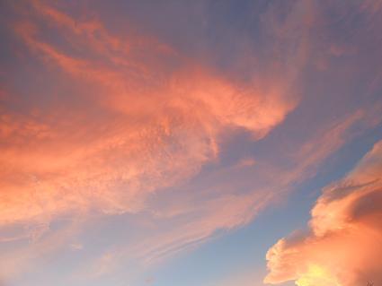 晩夏、紅の夕暮れ_e0175370_22332973.jpg