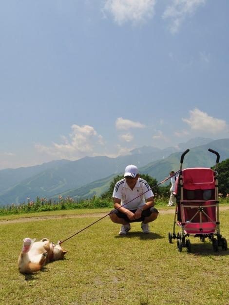 戸隠キャンプ2013⑥ 岩岳_a0126590_22264083.jpg