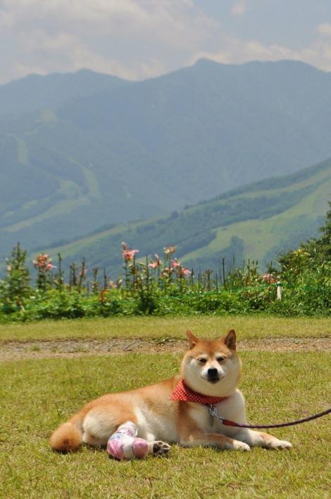 戸隠キャンプ2013⑥ 岩岳_a0126590_2231174.jpg