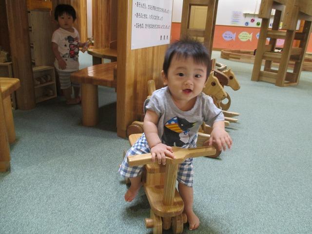 平成25年度 道東家族旅行・・・①_f0202703_23162565.jpg