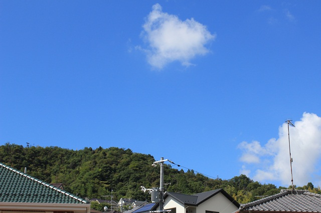 空(^^♪_a0213806_9234543.jpg