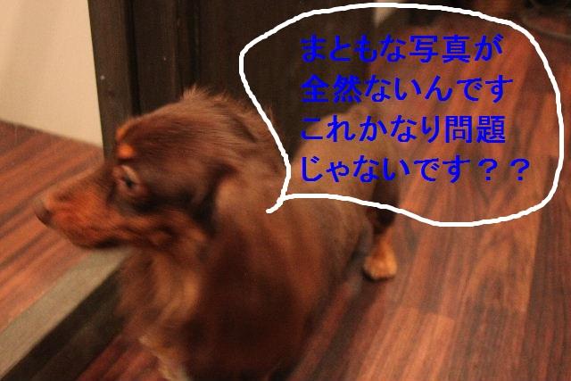 b0130018_020105.jpg