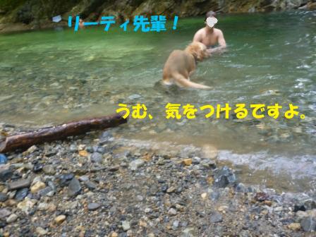 f0176830_13311182.jpg
