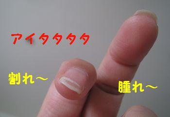 c0134734_17162984.jpg