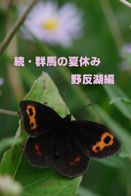 b0144049_1621557.jpg