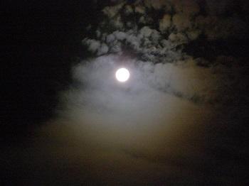 満月_d0233891_1162064.jpg