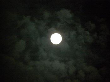 満月_d0233891_116421.jpg
