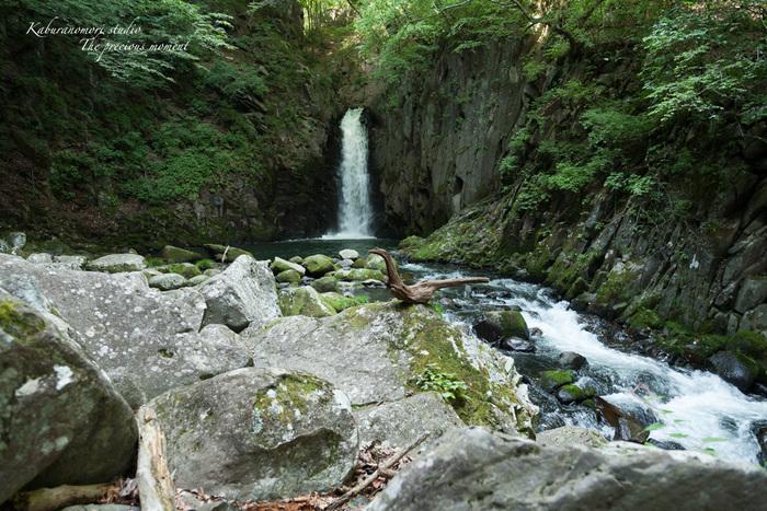 大滝でネッシィーに遭遇!_c0137403_14455580.jpg