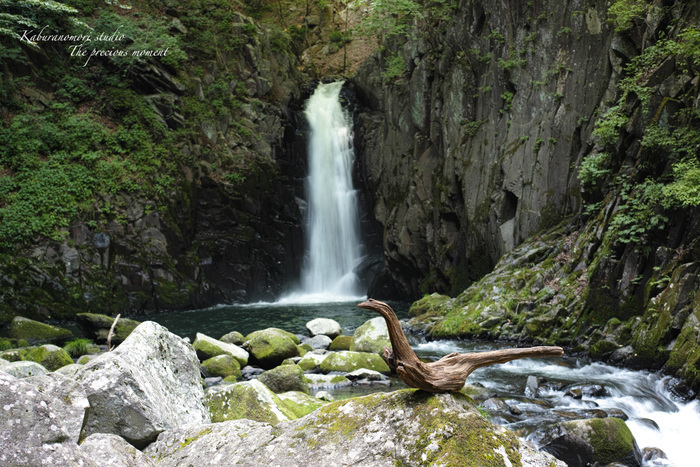 大滝でネッシィーに遭遇!_c0137403_1450973.jpg
