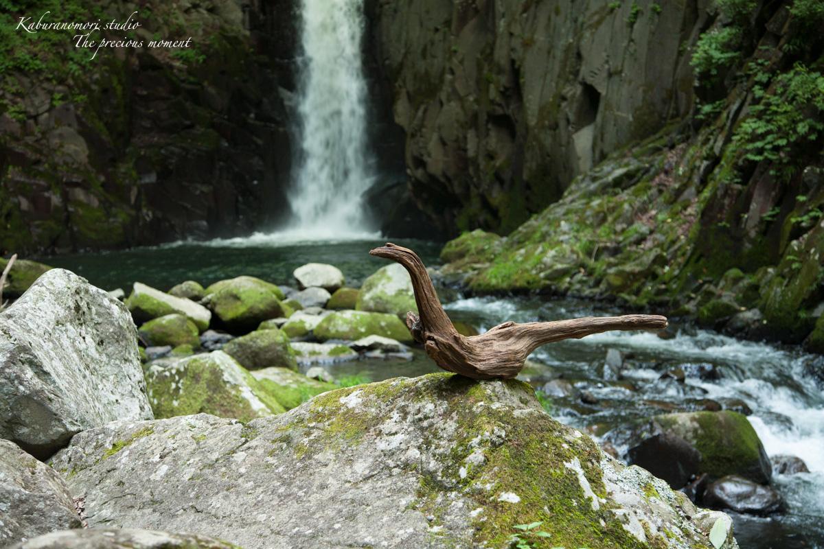 大滝でネッシィーに遭遇!_c0137403_14532840.jpg
