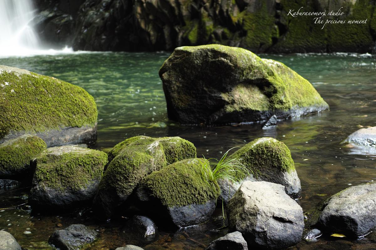 大滝でネッシィーに遭遇!_c0137403_14534760.jpg