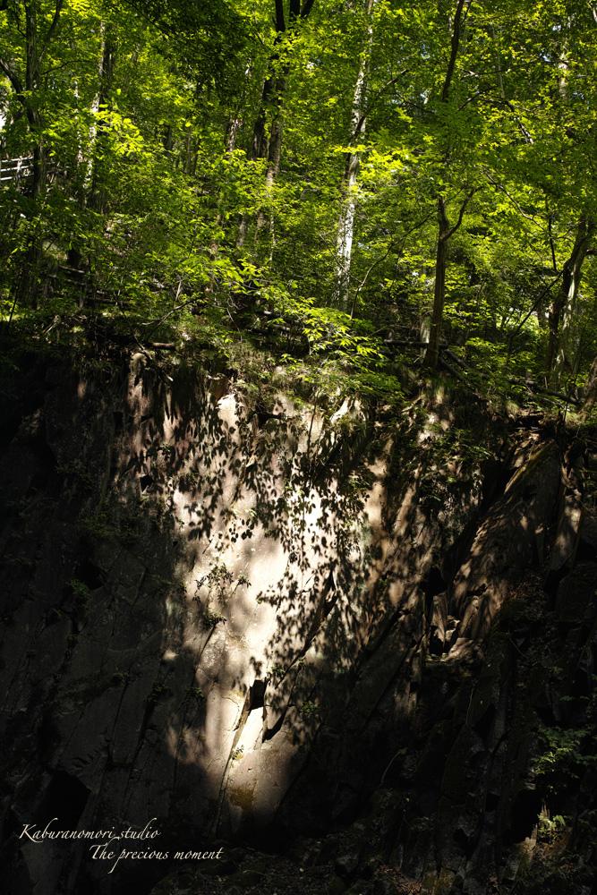 大滝でネッシィーに遭遇!_c0137403_1454161.jpg