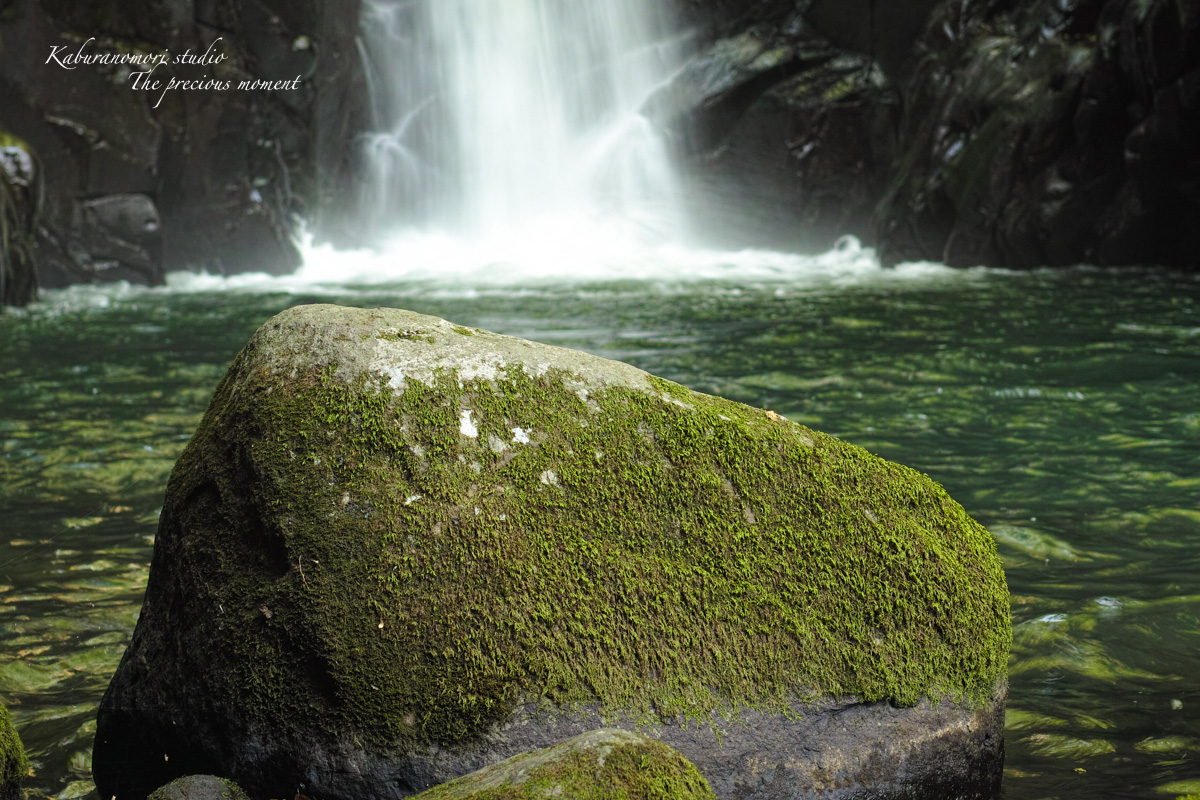 大滝でネッシィーに遭遇!_c0137403_1454645.jpg