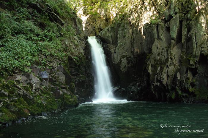 大滝でネッシィーに遭遇!_c0137403_1504511.jpg