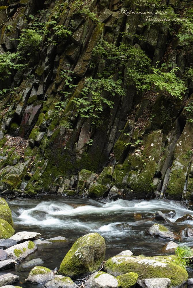大滝でネッシィーに遭遇!_c0137403_1542431.jpg
