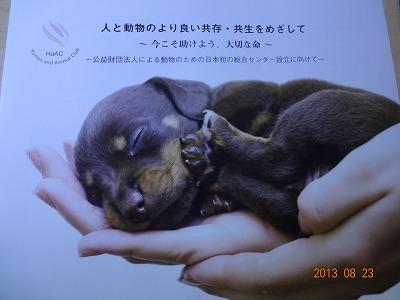 人と動物のより良い共存~_d0050503_8234164.jpg