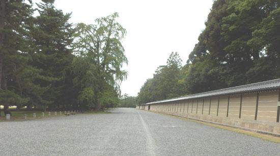 京都御苑の百日紅_e0048413_1419858.jpg