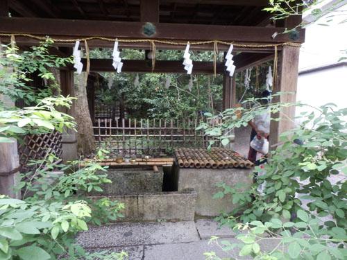 京都御苑の百日紅_e0048413_14201096.jpg