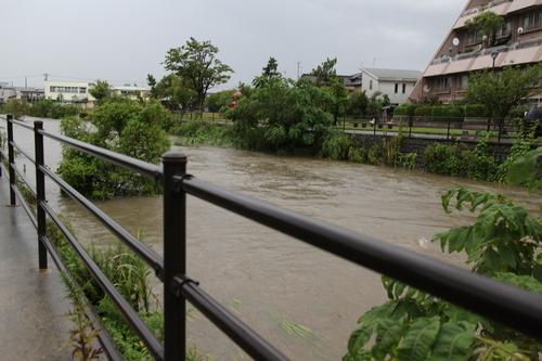 川が大変な事に_f0226713_1627439.jpg