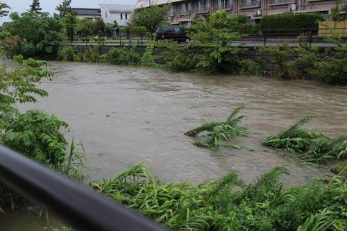 川が大変な事に_f0226713_1629023.jpg