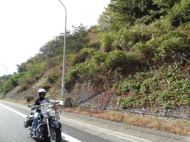 f0160040_0112011.jpg