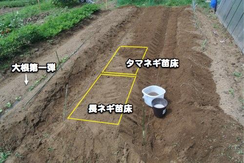 6接点自動点火装置完成近し_c0063348_634471.jpg
