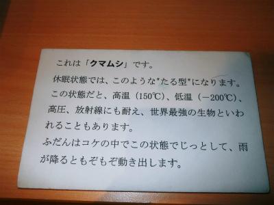 c0180460_1202071.jpg