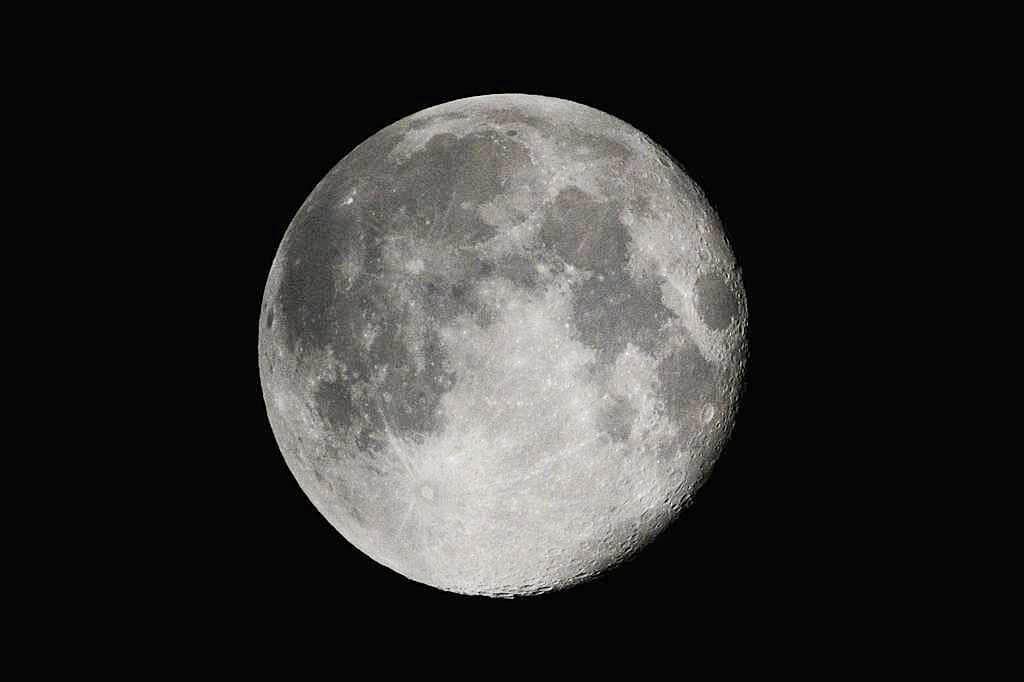 ハスカワセミ独り占め/ホオジロ幼鳥/十六夜の月_b0024798_22203588.jpg