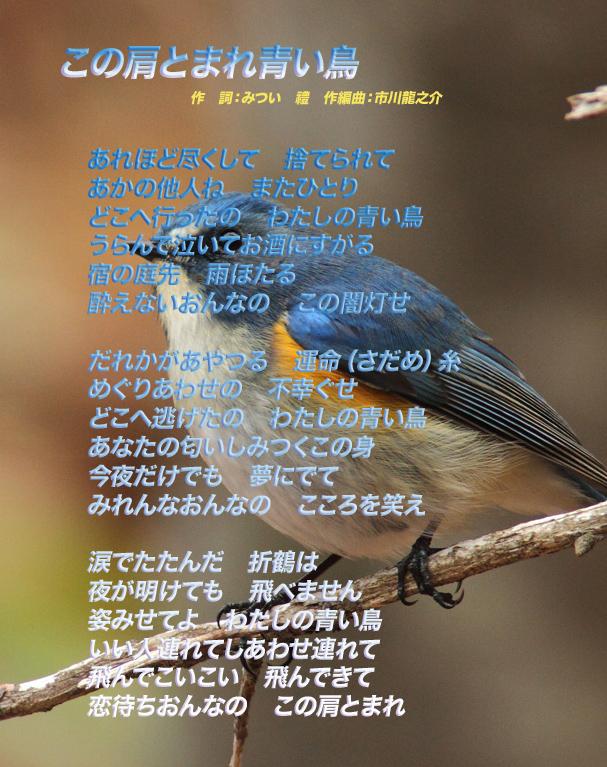 d0095910_548717.jpg