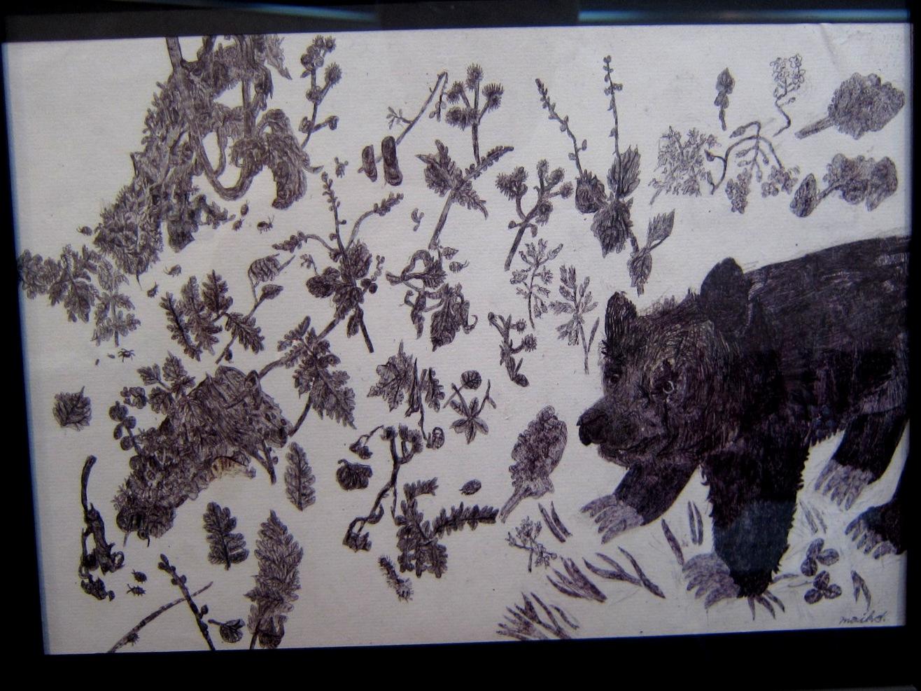 2163) 「鈴木麻衣子ボールペン画展 『クマと森』」 時計台 8月19日(月)~8月24日(土)   _f0126829_1371679.jpg