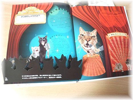 ネコの本。_c0080132_123959.jpg