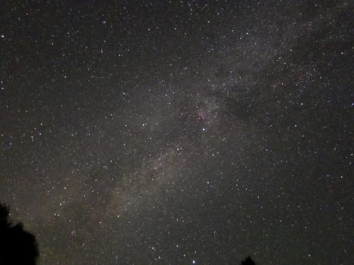 IC1318星雲 2013_b0167343_22554399.jpg