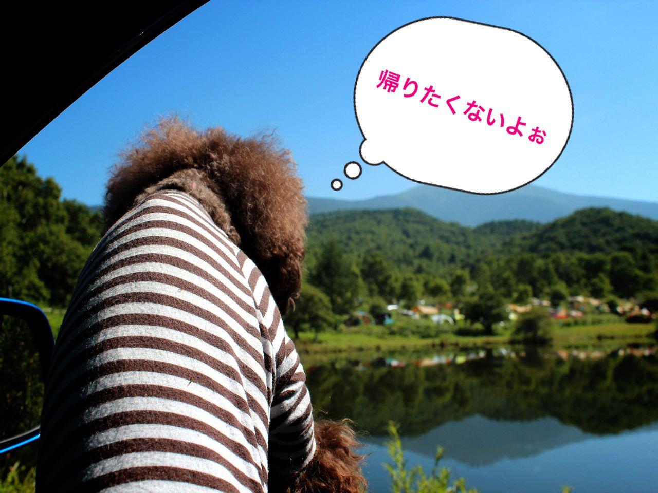 b0220958_10253977.jpg