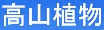 <2013年8月6~9日>越後の奥深き名峰(前編):奥只見の峻嶮峰「荒沢岳」_c0119160_12135375.jpg