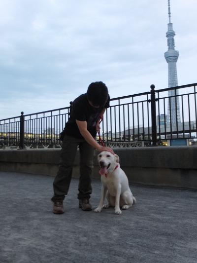 散歩レッスン_a0180681_21132043.jpg
