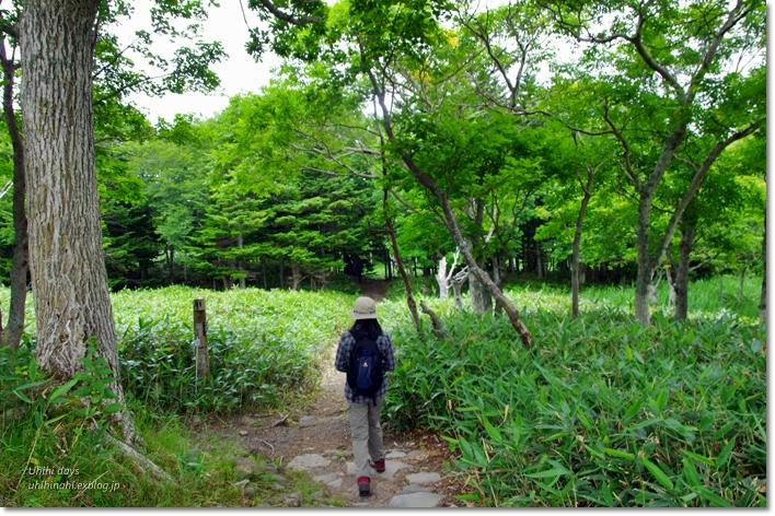 羅臼湖ハイキング!_f0179404_20362710.jpg