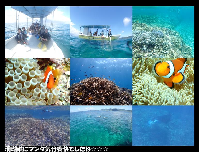川平湾☆珊瑚礁☆マンタ_a0155606_2143631.jpg