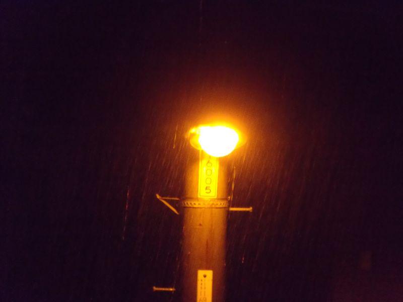 不安定な天気続く_c0025115_22162674.jpg