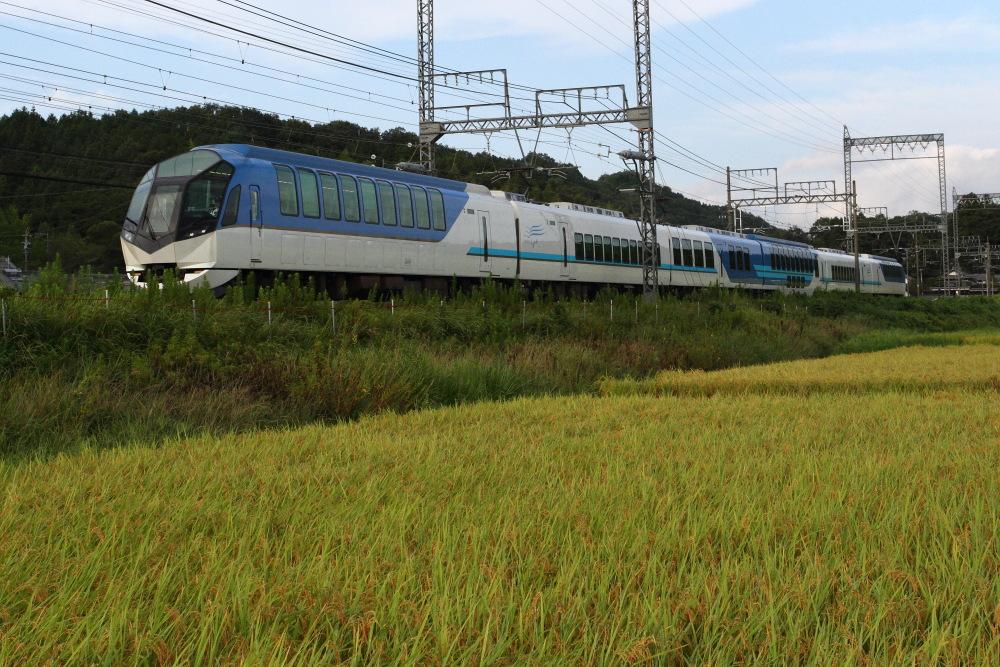 稲も、もう少しで収穫の時期に_d0226336_20114815.jpg
