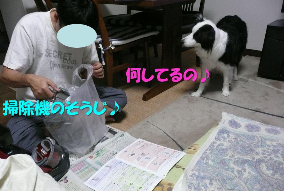 c0147241_20505737.jpg