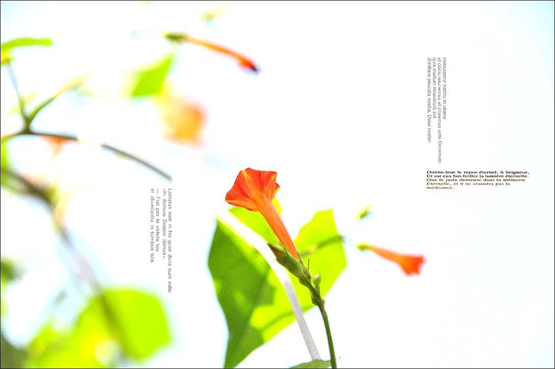 f0198771_23572162.jpg