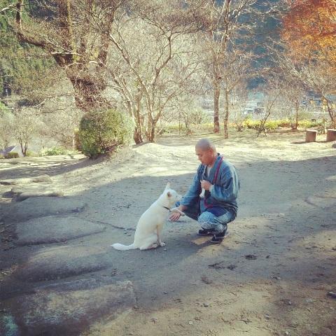 そもそも、犬を飼うことになった理由(ワケ) ⑦_b0090517_17361086.jpg