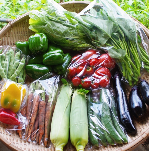 今週の野菜セット(8/27~8/31着)_c0110869_14475187.jpg