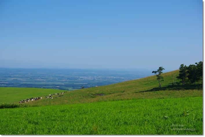 ナイタイ高原牧場 と 最後の楽しいキャンプ!_f0179404_2134478.jpg