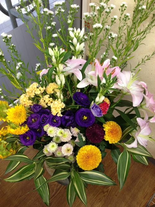 今週のお花とセール情報_a0200423_1543149.jpg