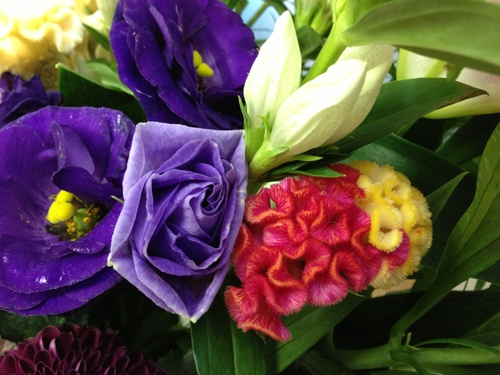 今週のお花とセール情報_a0200423_15433935.jpg