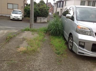 駐車場の除草と除草剤散布_c0186441_1732233.jpg