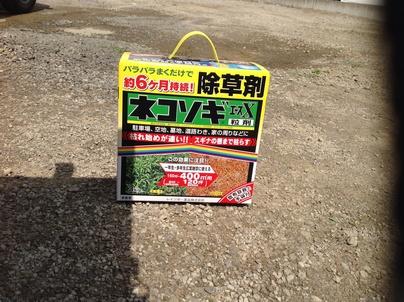 駐車場の除草と除草剤散布_c0186441_17494585.jpg