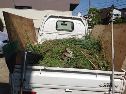 駐車場の除草と除草剤散布_c0186441_17542567.jpg