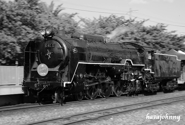 40年ぶりの再開と銀河鉄道999バージョン_c0173762_2223927.jpg